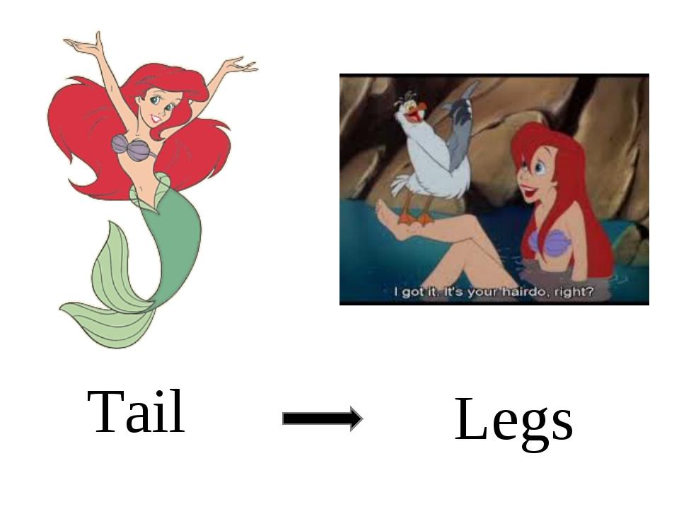 Tail Legs