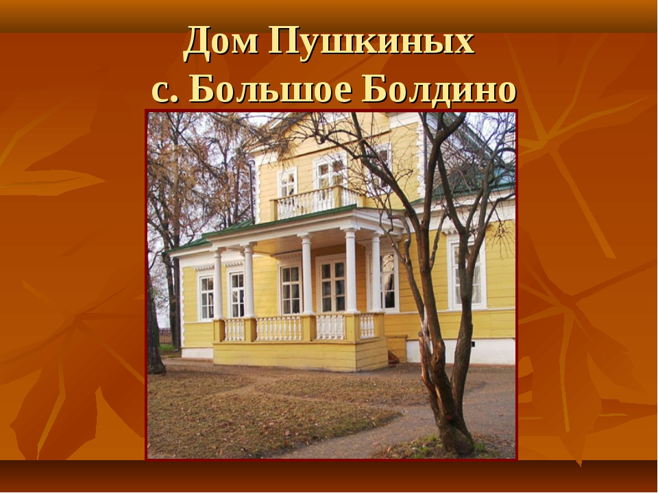 Дом Пушкиных с. Большое Болдино
