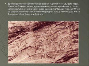 Древний естественно-исторический заповедник содержит около 280 фотографий. Мн