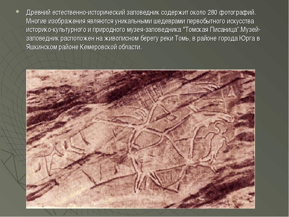 Древний естественно-исторический заповедник содержит около 280 фотографий. Мн...