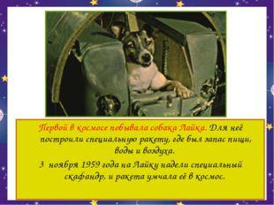Первой в космосе побывала собака Лайка. Для неё построили специальную ракету,