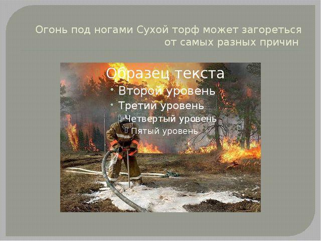 Огонь под ногами Сухой торф может загореться от самых разных причин