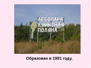Образован в 1991 году.