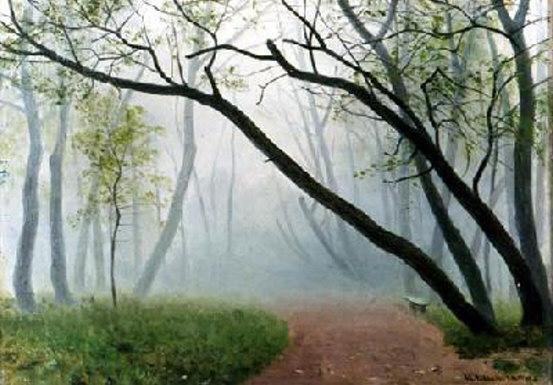 C:\Users\Админ\Pictures\Дорога в парке туман.jpg