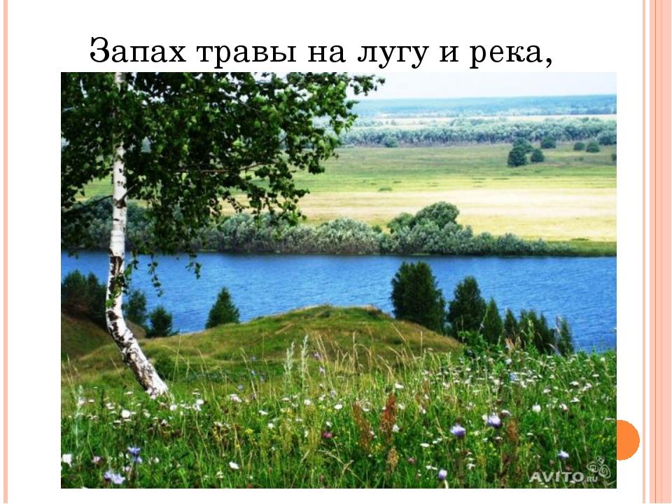 Запах травы на лугу и река,