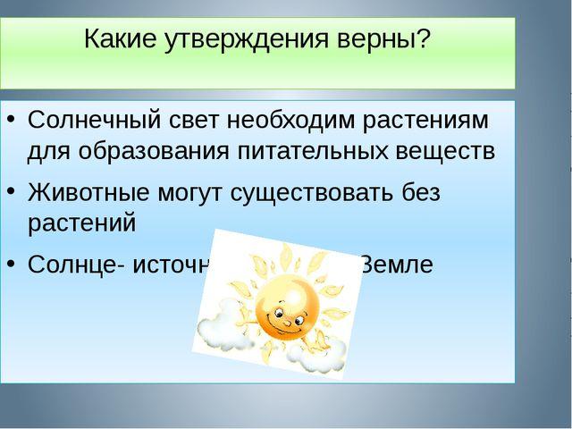 Какие утверждения верны? Солнечный свет необходим растениям для образования п...