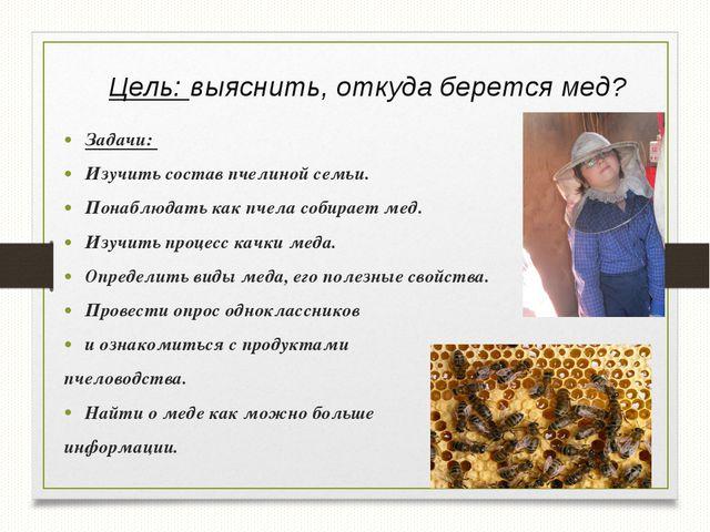 Цель: выяснить, откуда берется мед? Задачи: Изучить состав пчелиной семьи. По...