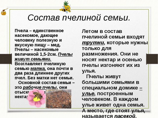 Состав пчелиной семьи. Летом в состав пчелиной семьи входят трутни, которые н...