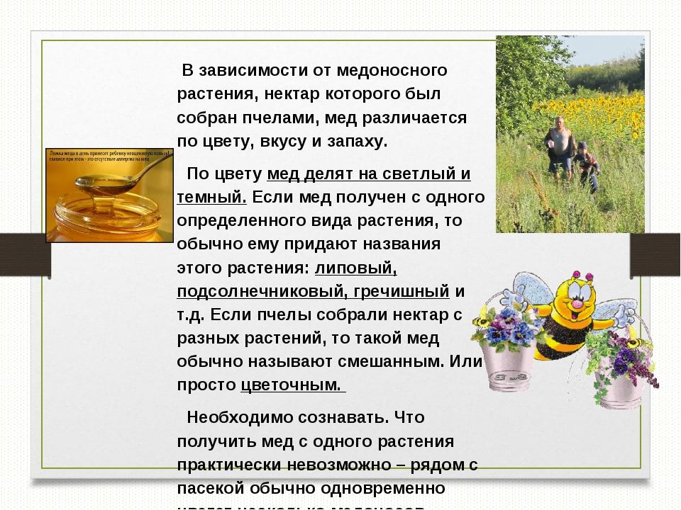 В зависимости от медоносного растения, нектар которого был собран пчелами, м...
