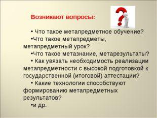 Возникают вопросы: Что такое метапредметное обучение? Что такое метапредметы