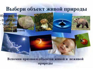 Выбери объект живой природы Вспомни признаки объектов живой и неживой природы