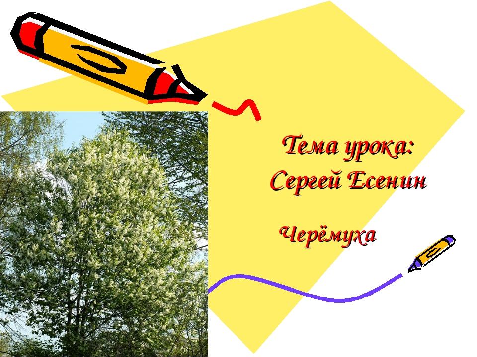 Тема урока: Сергей Есенин Черёмуха