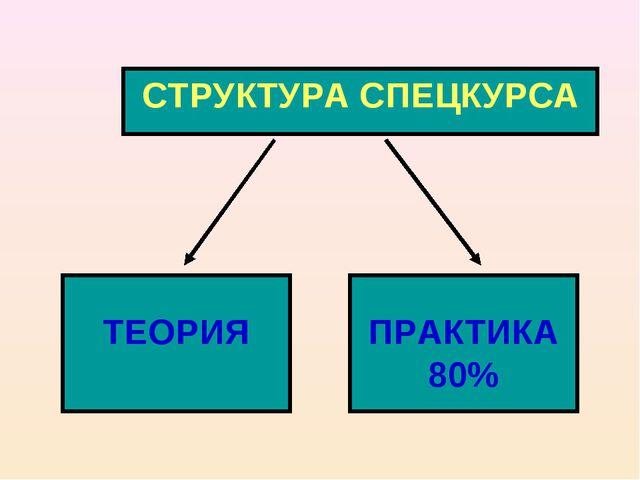 СТРУКТУРА СПЕЦКУРСА ТЕОРИЯ ПРАКТИКА 80%