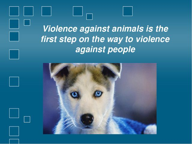 Violence against animals is the first step on the way to violence against peo...