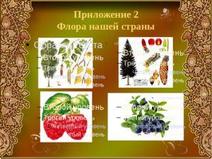 Приложение 2 Флора нашей страны
