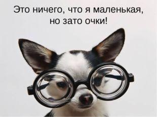 Это ничего, что я маленькая, но зато очки!