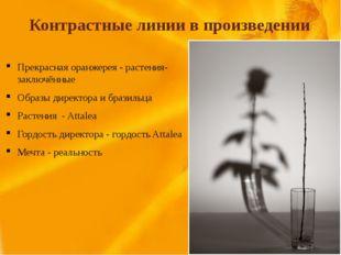Контрастные линии в произведении Прекрасная оранжерея - растения-заключённые