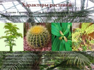Характеры растений     В сказке Гаршина растения действуют как люди, у них д