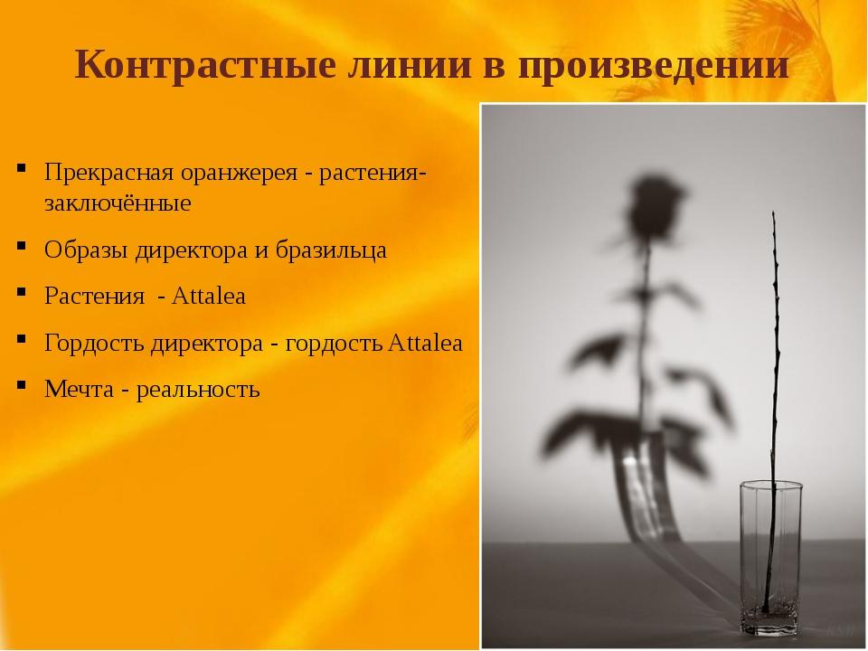 Контрастные линии в произведении Прекрасная оранжерея - растения-заключённые...