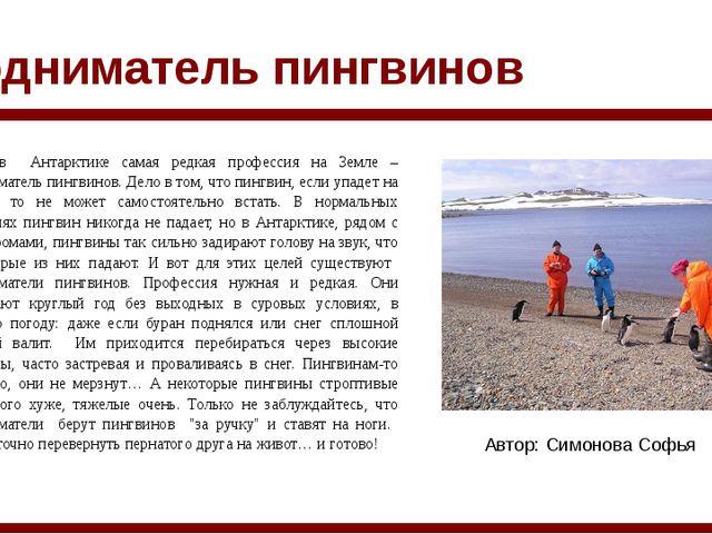 Подниматель пингвинов Автор: Cимонова Софья Есть в Антарктике самая редкая пр...