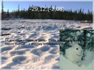 -29,12:(-2,08) 14 декабря – Наумов день- Если зайцы держаться около жилья - к