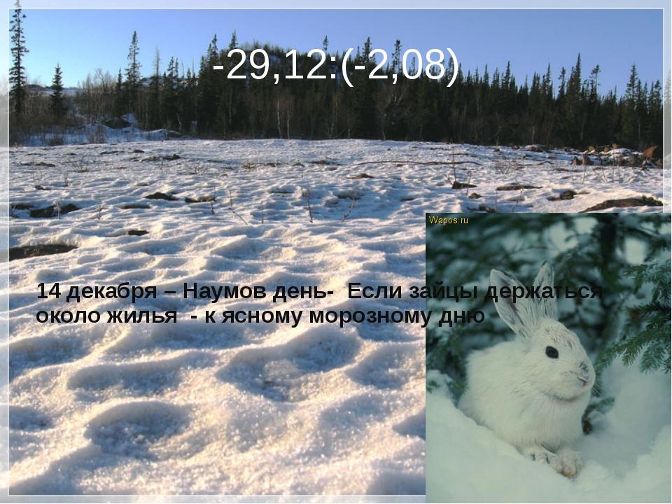 -29,12:(-2,08) 14 декабря – Наумов день- Если зайцы держаться около жилья - к...