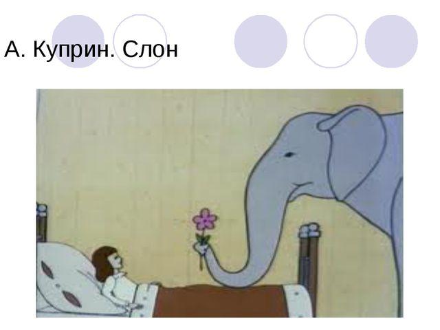 А. Куприн. Слон