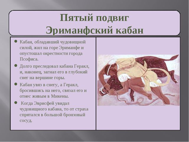 Пятый подвиг Эриманфский кабан Кабан, обладавший чудовищной силой, жил на гор...
