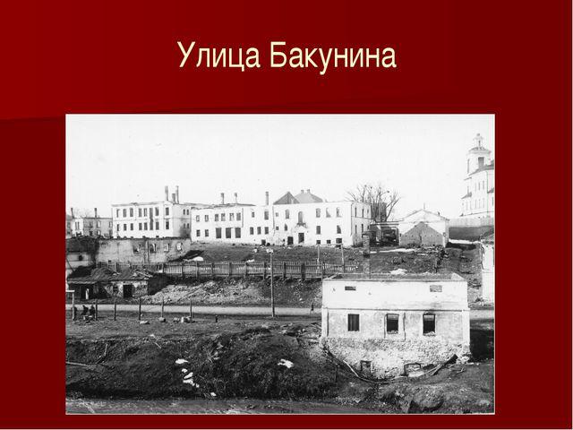 Улица Бакунина