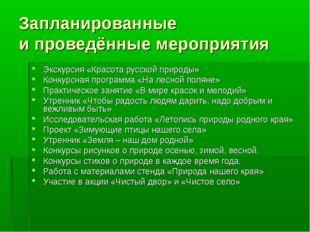 Запланированные и проведённые мероприятия Экскурсия «Красота русской природы»