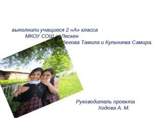 Проект «Времена года» выполнили учащиеся 2 «А» класса МКОУ СОШ с. Лескен Алб