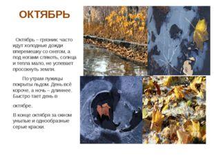 ОКТЯБРЬ Октябрь – грязник: часто идут холодные дожди вперемешку со снегом, а