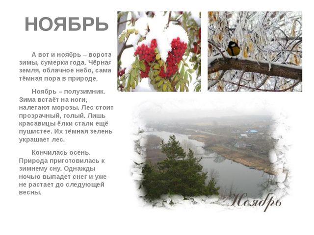 НОЯБРЬ А вот и ноябрь – ворота зимы, сумерки года. Чёрная земля, облачное неб...