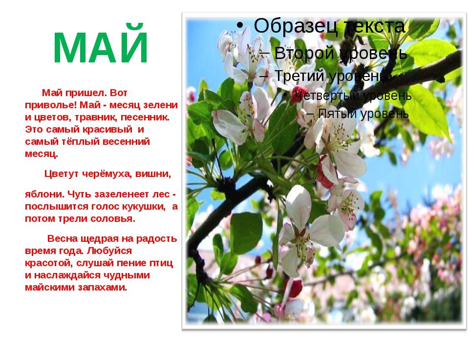 МАЙ Май пришел. Вот приволье! Май - месяц зелени и цветов, травник, песенник....