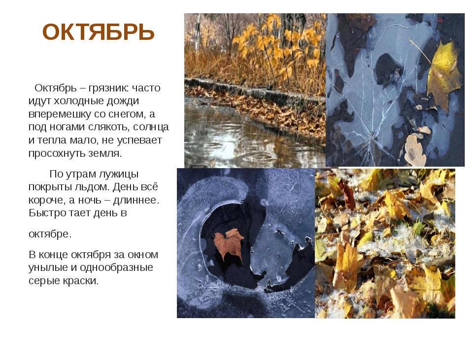 ОКТЯБРЬ Октябрь – грязник: часто идут холодные дожди вперемешку со снегом, а...