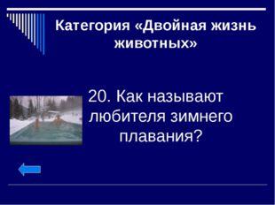 Категория «Двойная жизнь животных» 20. Как называют любителя зимнего плавания?