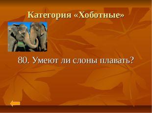 Категория «Хоботные» 80. Умеют ли слоны плавать?