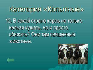 Категория «Копытные» 10. В какой стране коров не только нельзя кушать, но и п