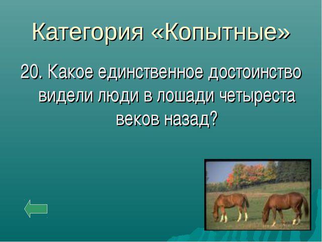 Категория «Копытные» 20. Какое единственное достоинство видели люди в лошади...