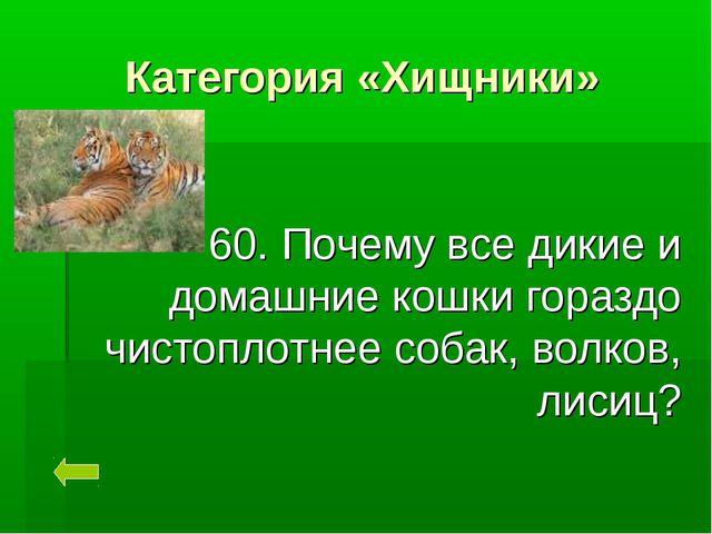 Категория «Хищники» 60. Почему все дикие и домашние кошки гораздо чистоплотне...