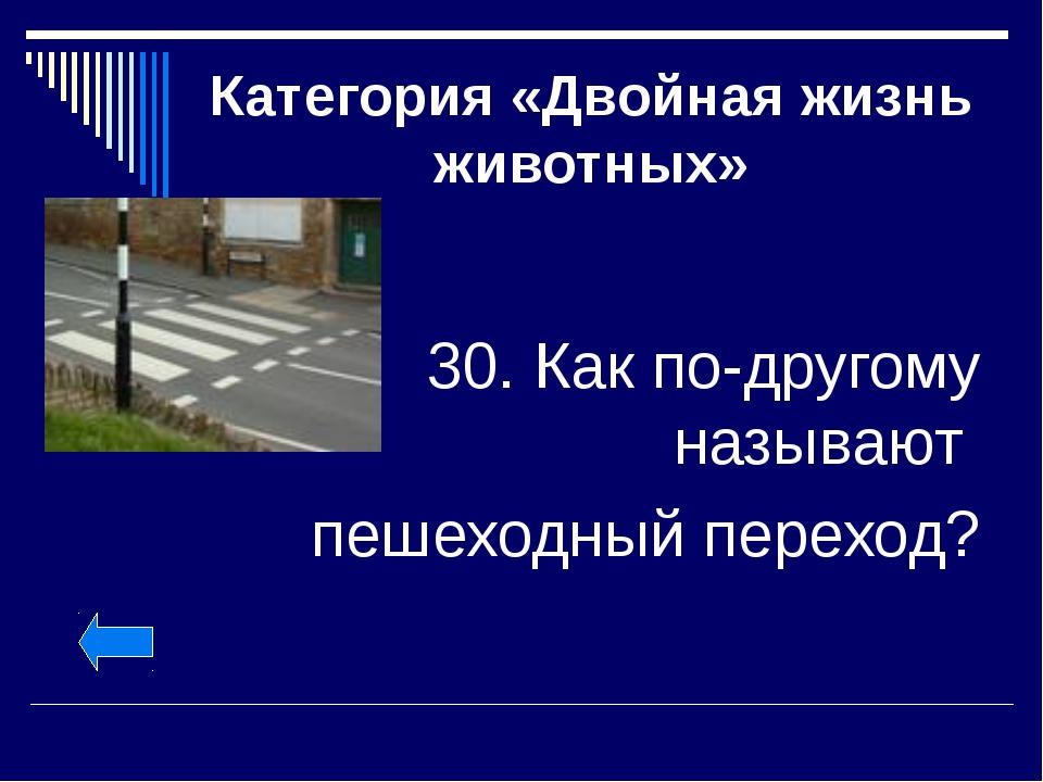 Категория «Двойная жизнь животных» 30. Как по-другому называют пешеходный пер...