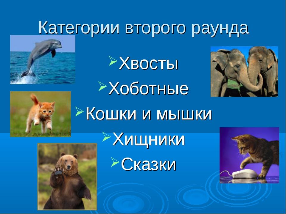 Категории второго раунда Хвосты Хоботные Кошки и мышки Хищники Сказки