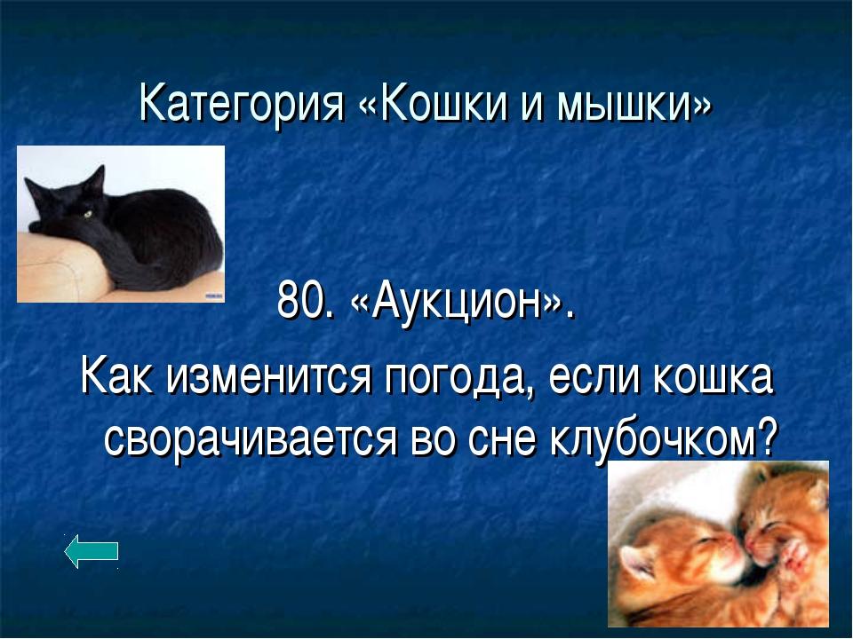 Категория «Кошки и мышки» 80. «Аукцион». Как изменится погода, если кошка сво...