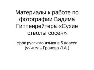 Материалы к работе по фотографии Вадима Гиппенрейтера «Сухие стволы сосен» Ур