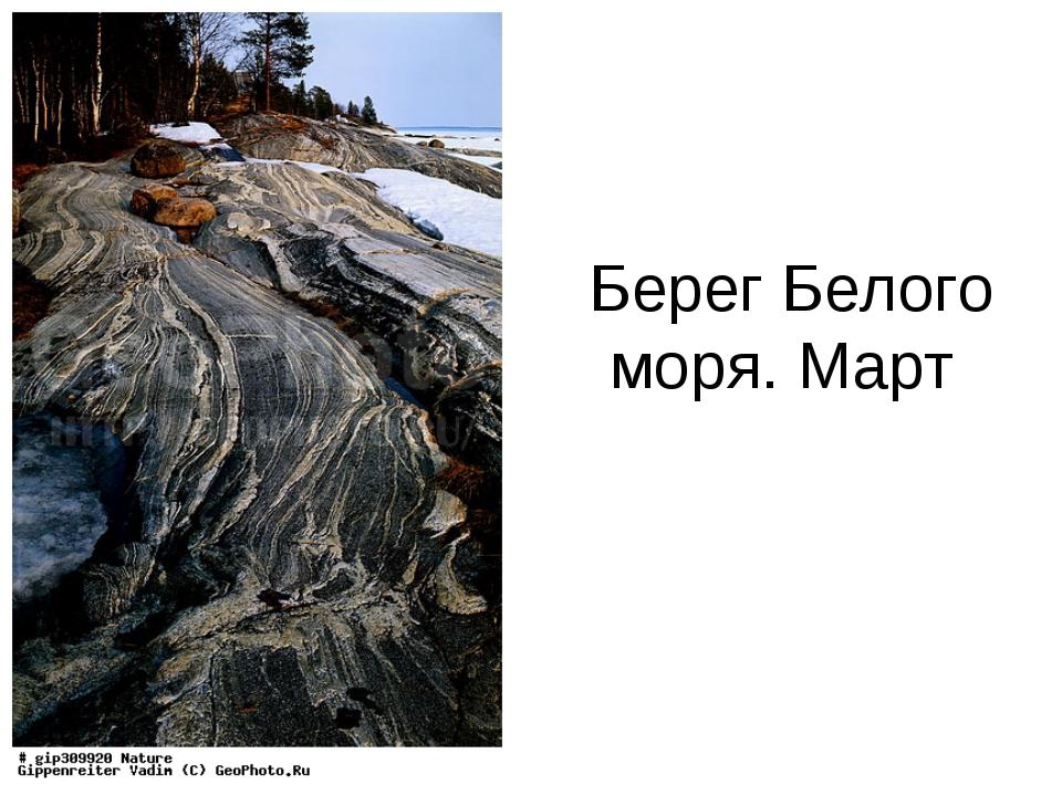 Берег Белого моря. Март