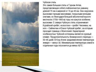Чуйская степь Это самая большая степь в Горном Алтае, представляющая собой с