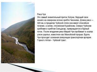 Река Чуя Это самый значительный приток Катуни, берущий свое начало на северно