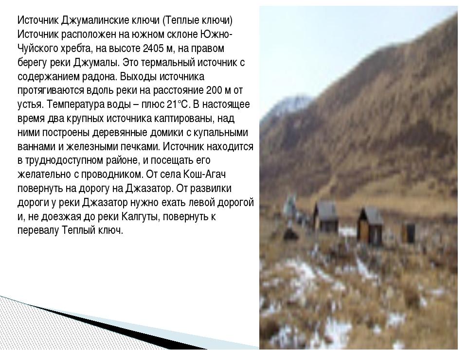 Источник Джумалинские ключи (Теплые ключи) Источник расположен на южном склон...