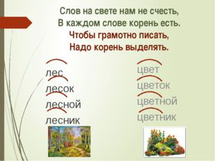 Слов на свете нам не счесть, В каждом слове корень есть. Чтобы грамотно писат