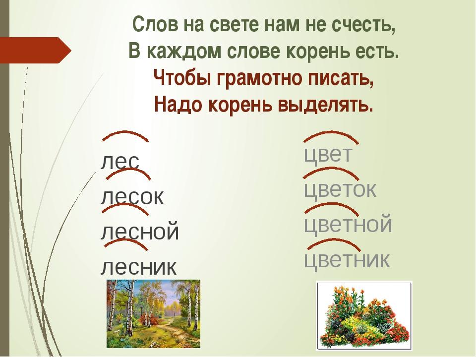 Слов на свете нам не счесть, В каждом слове корень есть. Чтобы грамотно писат...